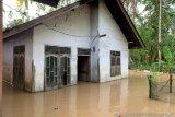 Banjir landa 14 desa di Aceh Barat