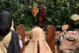 Warga menunggang gajah di Kebun Binatang Surabaya, Jawa Timur, Minggu (16/5/2021). Kebun Binatang Surabaya menjadi salah satu destinasi wisata yang ramai dikunjungi oleh wisatawan selama masa liburan Idul Fitri 1442 H. Antara Jatim/Didik Suhartono/zk