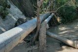 Saluran utama bendungan Tilong yang rusak akibat Seroja masih diperbaiki