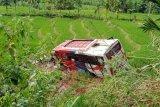 Berikut nama-mana korban dan penumpang bus Pasaman Transport Express yang 'nyungsep' ke sawah