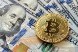 El Salvador beli 200 bitcoin  pertama