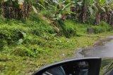 Proyek pembersihan jalan Manado-Tondano, bersihkah?