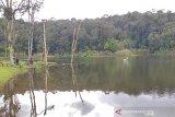 Balai TNLL  kantongi rekomendasi Satgas COVID buka kembali Danau Tambing