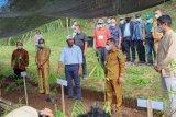 Gubernur resmikan Kampus Desa Bambu Agroforestri di Flores