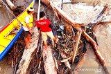 Tim SAR  terus cari korban perahu terbalik Sungai Kayan