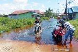 Luapan Sungai Kahayan mulai merendam permukiman di Palangka Raya