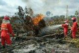 Delapan kabupaten di Sumsel siaga menghadapi  kebakaran hutan dan lahan