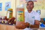 PLN mendukung 39 UMKM di Papua dan Papua Barat