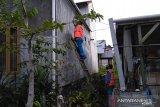 Gangguan listrik Kalimantan berdampak pada jutaan pelanggan PLN