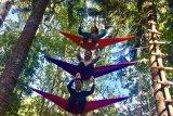 Ketama Adventure Park Tawarkan Outbond Hingga Lokasi Wedding