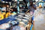 DKP Lampung siap lepasliarkan 420.000 benih ikan endemik antisipasi kepunahan