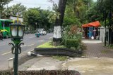 Yogyakarta menyiapkan dua lokasi penataan PKL Jalan Sudirman