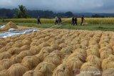 Jumlah Kunjungan Wisman Ke Indonesia Merosot