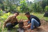 JBI OKU peringati Hari Lingkungan  Hidup dengan menanam pohon