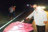 Polisi selidiki kasus tabrak lari merenggut nyawa