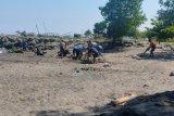 DKP Mataram: persiapan tender sentra kuliner ikan mencapai 80 persen