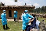 India laporkan 40.134 kasus baru COVID-19, kematian bertambah 422 kasus