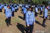 BKPSDM Palangka Raya nantikan petunjuk teknis penerimaan PPPK