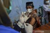 Seorang warga lanjut usia bersiap menerima suntikan vaksin COVID-19 di Balai Desa Sukaraja, Kabupaten Ciamis, Jawa Barat, Selasa (8/6/2021). Dinas Kesehatan Kabupaten Ciamis sudah memberikan vaksin dosis pertama kepada lansia sebanyak 8.155 orang sedangkan dosis kedua 6.798 orang dari jumlah sasaran penerima vaksin untuk lansia sebanyak 167.569 orang. ANTARA JABAR/Adeng Bustomi/agr