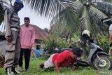 Selama pandemi COVID-19, Satpol PP Pariaman tindak 5.013 pelanggar protokol kesehatan