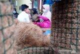 Dari serabut kelapa, pemuda ini angkat perekonomian lingkungannya