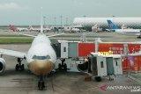 Kasus COVID meningkat, arus keluar-masuk bandara di China selatan diperketat