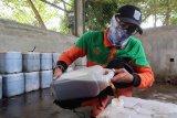 Riset: Jakarta miliki potensi pasok 20 persen biodiesel minyak jelantah