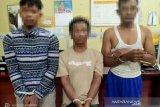 Tiga pelaku pencuri sapi ditangkap Satreskrim Polres Pasbar