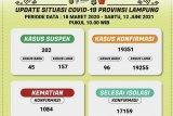 Kasus terkonfirmasi positif COVID-19 di Lampung bertambah 96 kasus