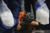 Polres Sinjai amankan lima orang terkait narkoba, salah satunya polisi