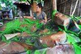 Pemasaran Batik Pamekasan Terkendala Lonjakan COVID-19 Bakalan