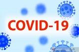 Kasus positif COVID-19 bertambah 12.990 orang