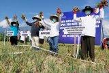 BI terus bantu tingkatkan perekonomian Sulteng yang terdampak pandemi