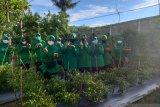 Ketua PersitKodim Tarakan Pimpin Panen Hasil Progam Ketahanan Satuan