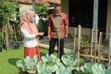 KWT Lampung manfaatkan lahan pekarangan cegah konflik gajah dengan manusia