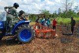 Kementerian Pertanian akan tambah food estate berbasis hortikultura