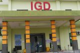 Tingkat Keterisaian Rumah Sakit COVID-19 di Madiun. Petugas beraktivitas di gedung Instalasi Gawat Darurat (IGD) tempat isolasi pasien COVID-19 di Rumah Sakit Umum Daerah (RSUD) Dolopo, Kabupaten Madiun, Jawa Timur, Senin (21/6/2021). Akibat lonjakan kasus positif COVID-19 di daerah itu, tingkat keterisian tempat tidur atau Bed Occupancy Rate (BOR) di rumah sakit tersebut mencapai 81,05 persen, melampaui ambang batas aman BOR yang ditetapkan Organisasi Kesehatan Dunia (WHO) sebesar 60 hingga 80 persen. Antara Jatim/Siswowidodo/zk
