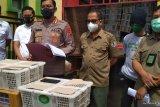 Tim gabungan polisi dan NGO gagalkan penyelundupan ribuan burung