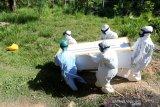Petugas Rumah Sakit Umum Zainal Abidin (RSUZA) membawa peti jenazah warga yang meninggal dunia akibat terinfeksi COVID-19 untuk dikebumikan di Banda Aceh, Aceh, Selasa (22/6/2021). Data Satgas Penanganan COVID-19 mencatat hingga 21 Juni 2021 jumlah kasus terkonfirmasi positif di seluruh Indonesia  mencapai 2.004.445 kasus, 1.801.761 sembuh dan 54.965 meninggal dunia. Antara Aceh/Irwansyah Putra.