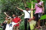 Bunga bangkai raksasa mekar di wisata air terjun Napal Jungur Bengkulu