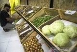 Karyawan menata sejumlah sayuran yang dijual di Alifmart Store, Bandung, Jawa Barat, Kamis (24/6/2021). Toko sayuran tersebut menjual sedikitnya 64 jenis komoditas  sayuran hasil pertanian yang dibawa langsung dari kelompok tani Pondok Pesantren yang ada di Jawa Barat sebagai salah satu sektor usaha pemberdayaan dan peningkatan ekonomi bagi pertani. ANTARA FOTO/Novrian Arbi/agr