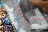 Jepara rekrut 1.000 sukarelawan antinarkoba