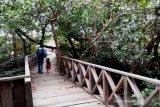 Pesona wisata di Tanjung Palas Utara