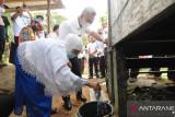 Program sabungan gratis air bersih di Tarakan berlanjut