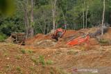 Walhi dorong Bareksrim Polri tindak tambang emas ilegal di Aceh Barat