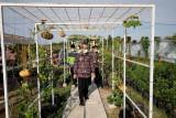 Bupati inginkan Agrofood Bantul latih masyarakat teknologi pertanian
