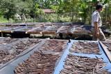 Alor mampu ekspor vanili ke Jerman
