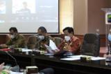 Asisten Bidang Kesra Pemkab Lamsel pimpin rapat bahas kerja sama publikasi