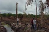 Polda Kalteng selidiki dugaan pidana lingkungan hidup di Bartim