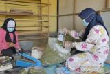 Teh daun kelor Kalsel jadi potensi komoditas ekspor
